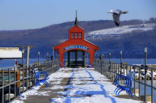 Seneca Lake by David Simons
