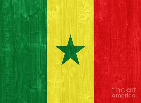Senegal flag by Luis Alvarenga