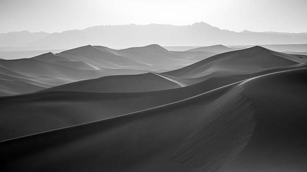 Sensual desert by Stephanus Le Roux