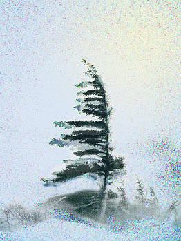 Sentinal at the Northern Treeline by Alice Ramirez