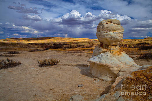 Sentinel by Barbara Schultheis