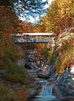Sentinel Pine covered bridge by Jim  Wallace