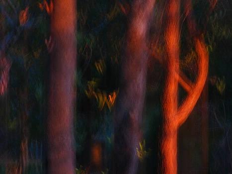 Michelle Wrighton - Sentinels