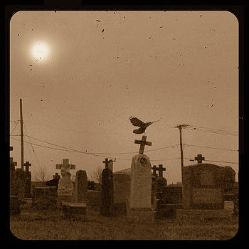 Gothicrow Images - Sepia Morning Fog