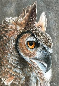 Sepia Owl by Carla Kurt
