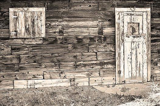 James BO  Insogna - Sepia Rustic Old Colorado Barn Door and Window