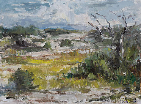 September in the Dunes by Theresa Grillo Laird