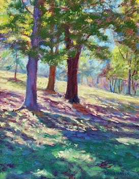 September Shadows at Fairy Stone Park by Bonnie Mason