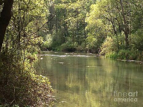 September Spring Creek by Mark Messenger