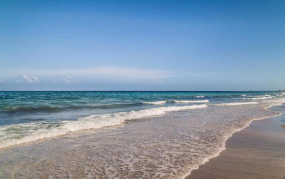 Serene Beach Shoreline by Andrea  OConnell