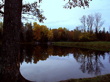 Serene refection by Sherry Hudson