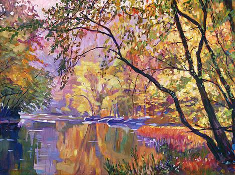 David Lloyd Glover - SERENE REFLECTIONS