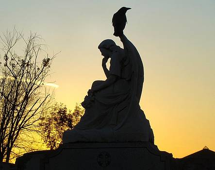 Gothicrow Images - Serene Silhouette