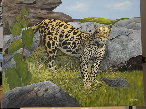 Serengeti  Leopard by James Lawler