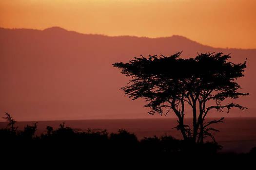 Sebastian Musial - Serengeti Sunset