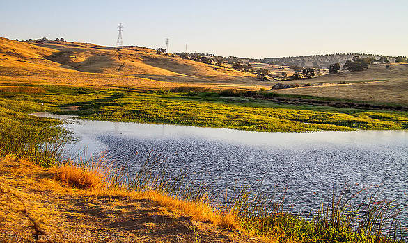 Serenity in the Hills by Brian Williamson