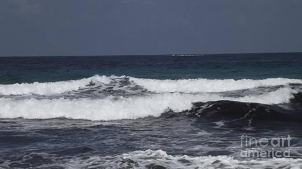 Serenity in Waves by Diane Miller