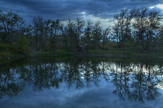 Serenity by Kelly Kitchens