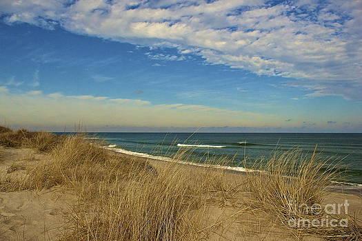 Amazing Jules - Serenity on Coast Guard Beach