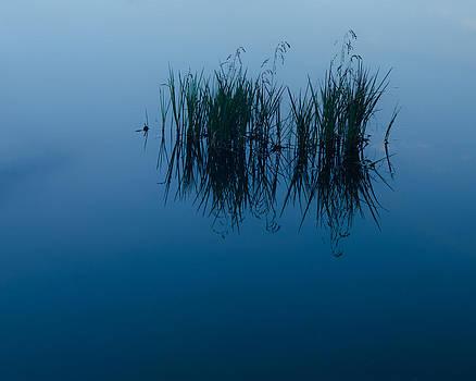 Serenity by Paul Cimino