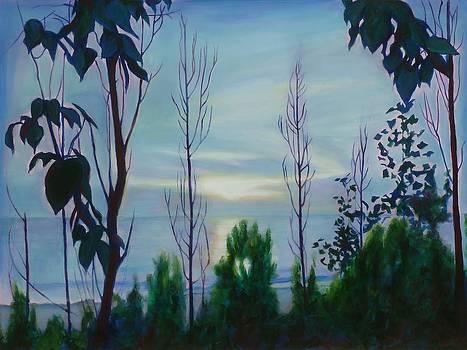 Serenity by Sheila Diemert