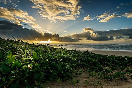 Serrambi Sunrise IV by Vinicios De Moura