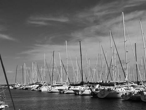 Set Sail by Jamie Johnson