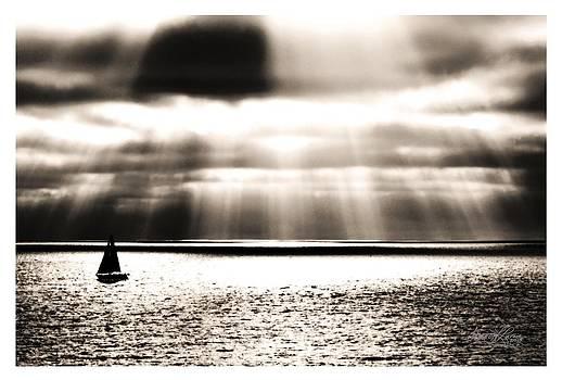 Set Sail by Sharon  Lavoie