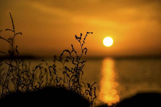 Setting Sun by Alastair Graham