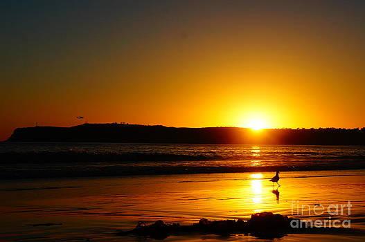 Setting Sun by Tracey McQuain