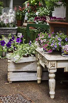 Heather Applegate - Shabby Chic Flower Shop