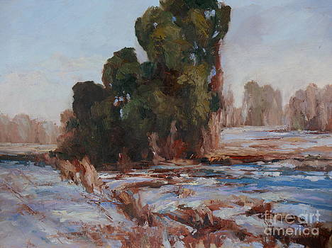Shaded Snow by Virginia Dauth