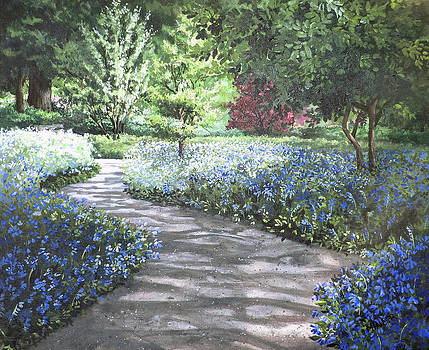Shades of Blue by Mary Palmer