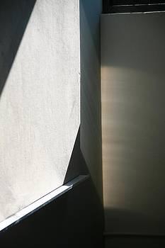 Shadow by Marigan O'Malley-Posada