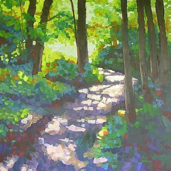 Shadowed Path by Mary McInnis