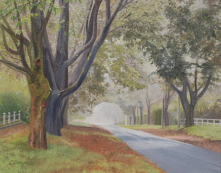 Shadow and fog down beautiful Atlantic Avenue by Barbara Barber