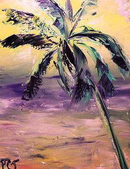 Patricia Taylor - Shadows and Light with Palm Tree