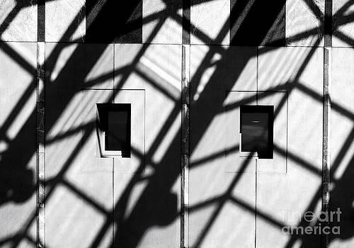 Steven Ralser - shadows canberra