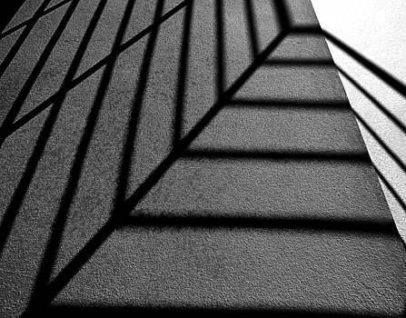 Shadows by Eileen Shahbazian