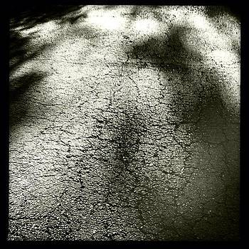 Shadows On Pavement, Accidental Photo by Deirdre Ryan