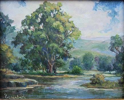 Shady Oak by Beth Maddox