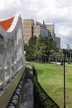 Lynn Palmer - Shands Cancer Hospital From Pedestrian Bridge