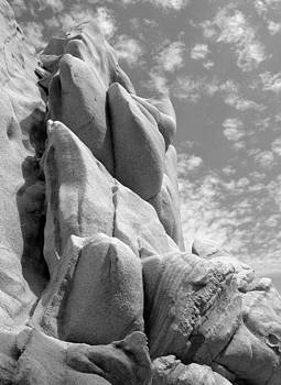 Ramunas Bruzas - Shaped by Nature