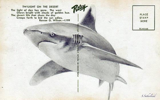 Shark Postcard by Sarah Sutherland