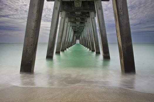 Regina  Williams  - Sharkies Pier