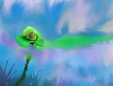 Shawna's Rose by Douglas Day Jones