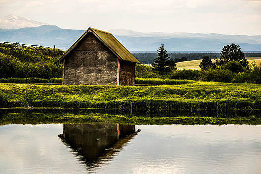 Shed Reflection by Dean Chytraus