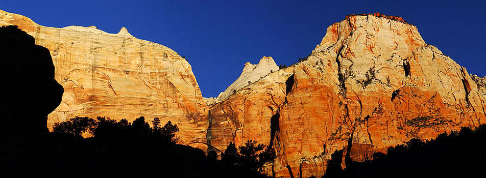 Sheer cliffs of Zion by Qing Yang