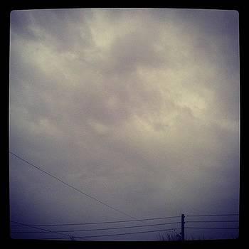 @sheinellefox29 The Weather Is by Tyson Gravity