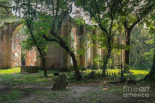 Dale Powell - Lowcountry Sheldon Church Ruins